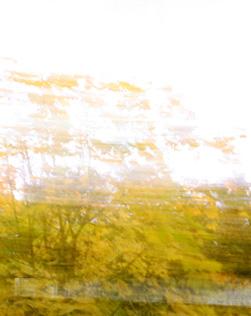 Spizahorn in Autumn - by SL Wong
