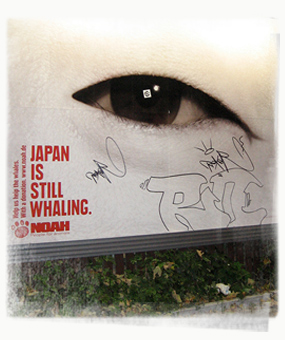 Read more about the article Against Japanese Whaling