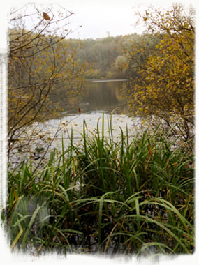 At the foot of the Müggelberge is The Teufelsee. It is 20,000 years old and associated with myths, one of which tells of a princess who lives in it. - by S.L. Wong